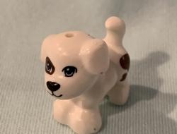 WHITE DOG 1