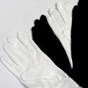 Blank Gloves